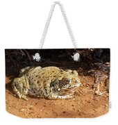 Colorado River Toad Weekender Tote Bag