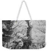 Colorado Rocky Mountain Aspen Road Portrait Bw Weekender Tote Bag