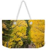 Colorado Rocky Mountain Aspen Road Portrait  Weekender Tote Bag