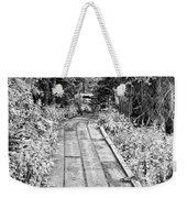 Colorado Rocky Mountain Forest Path Bw Weekender Tote Bag