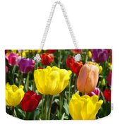 Colorful Bright Tulip Flowers Field Tulips Floral Art Prints Weekender Tote Bag