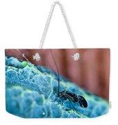 Colorful Psocid 1 Weekender Tote Bag
