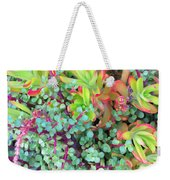 Colorful Succulent Plants For You Weekender Tote Bag