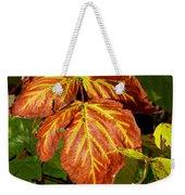Colors And Veins Weekender Tote Bag