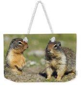 Columbian Ground Squirrels, Banff Weekender Tote Bag