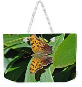 Comma Anglewing Butterfly - Polygonia C-album Weekender Tote Bag
