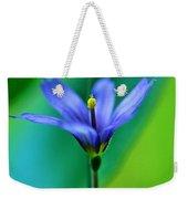 Common Blue Eyed Grass Sisyrinchium Weekender Tote Bag