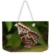 Common Blue Morpho Weekender Tote Bag