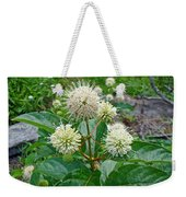 Common Buttonbush - Cephalanthus Occidentalis Weekender Tote Bag