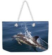 Common Dolphin Delphinus Delphis Weekender Tote Bag