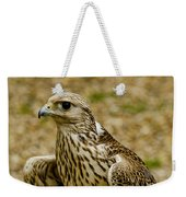 Common Female Kestrel Weekender Tote Bag