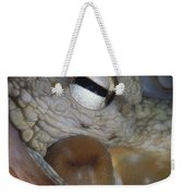 Common Octopus Octopus Vulgaris Close Weekender Tote Bag
