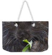Common Porcupine Erethizon Dorsatum Weekender Tote Bag