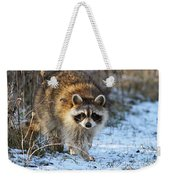 Common Raccoon Weekender Tote Bag
