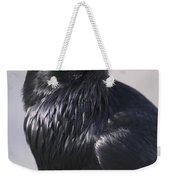 Common Raven, Jasper National Park Weekender Tote Bag