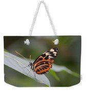 Common Tiger Glassywing Weekender Tote Bag