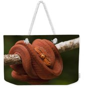 Common Tree Boa Corallus Hortulanus Weekender Tote Bag