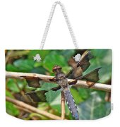Common Whitetail Dragonfly - Plathemis Lydia - Male Weekender Tote Bag