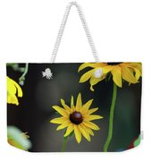Compass Points Weekender Tote Bag