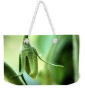 Conception Of A Roma Tomato - On The Vine Square Weekender Tote Bag