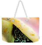 Conch Eyes Weekender Tote Bag