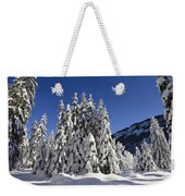 Coniferous Forest In Winter Weekender Tote Bag by Konrad Wothe