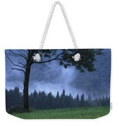 Coniferous Trees Early In The Morning Weekender Tote Bag