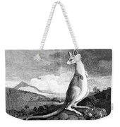 Cook: Kangaroo, 1773 Weekender Tote Bag