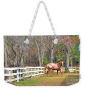 Coosaw - Outside The Fence Weekender Tote Bag