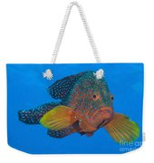 Coral Grouper, Kimbe Bay, Papua New Weekender Tote Bag