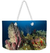 Coral Reef And Sponges, Belize Weekender Tote Bag