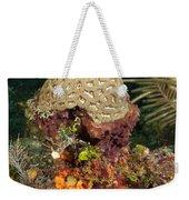 Coral Top Knot Weekender Tote Bag