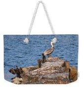 Cormorants And Pelican Weekender Tote Bag