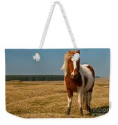 Cornish Pony Weekender Tote Bag