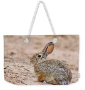 Cottontail Bunny Weekender Tote Bag