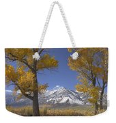 Cottonwood Trees Fall Foliage Carson Weekender Tote Bag by Tim Fitzharris