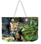 Cougar Coming Through Weekender Tote Bag