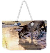 Cougar Stops For A Drink Weekender Tote Bag