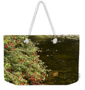 County Kerry, Ireland Fuchsia Bush Weekender Tote Bag