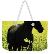 County Tipperary, Ireland Horse In A Weekender Tote Bag