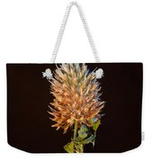 Cover Aglow 1 Weekender Tote Bag