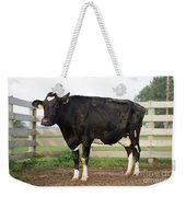 Cow With Johnes Disease Weekender Tote Bag
