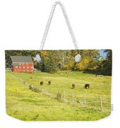 Cows Grazing On Grass In Farm Field Fall Maine Weekender Tote Bag