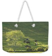 Cows On Hillside Summer In Maine Weekender Tote Bag