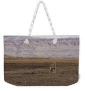 Coyote Badlands National Park Weekender Tote Bag