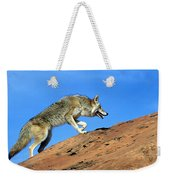 Coyote Climbs Mountain Weekender Tote Bag