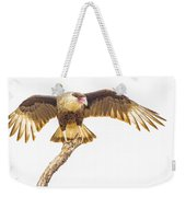 Crested Caracara Taking Off Weekender Tote Bag