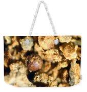 Cretaceous Meteorite Weekender Tote Bag