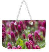 Crimson Clover In All Its Glory Weekender Tote Bag