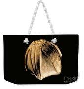 Crinoid Fossil Weekender Tote Bag